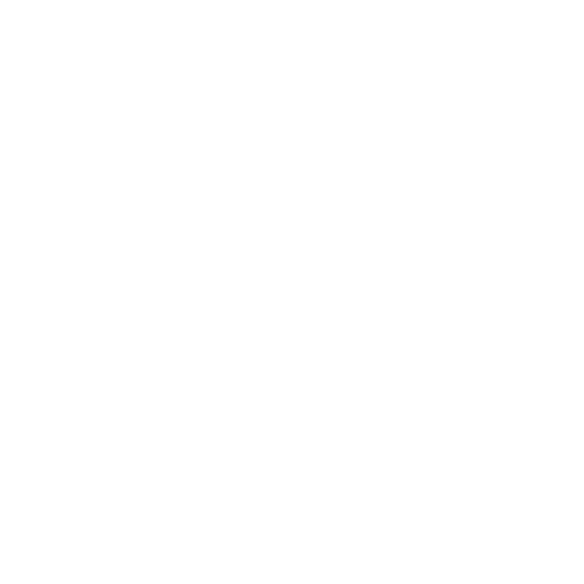 ACH Volley Logo